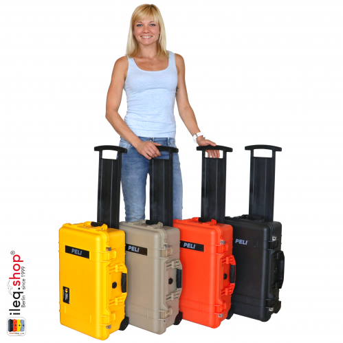 1510 Valise Carry On